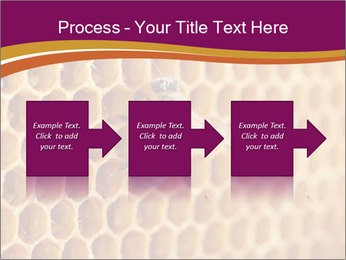 0000073446 PowerPoint Template - Slide 88