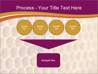 0000073446 PowerPoint Template - Slide 93