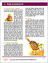 0000073446 Word Templates - Page 3