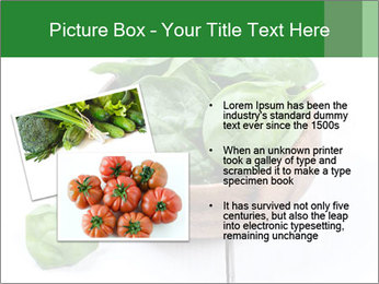 0000073453 PowerPoint Template - Slide 20