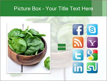 0000073453 PowerPoint Template - Slide 21