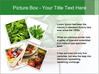 0000073453 PowerPoint Templates - Slide 23