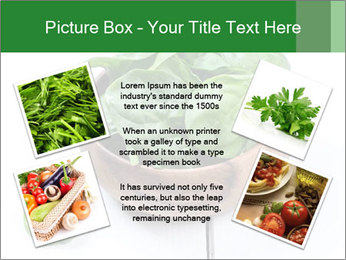 0000073453 PowerPoint Template - Slide 24