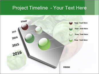 0000073453 PowerPoint Template - Slide 26
