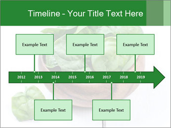 0000073453 PowerPoint Template - Slide 28
