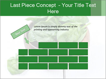 0000073453 PowerPoint Template - Slide 46