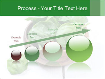 0000073453 PowerPoint Templates - Slide 87