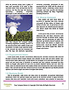 0000073454 Word Template - Page 4