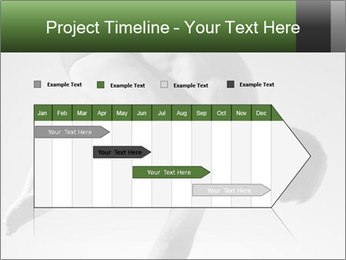 0000073455 PowerPoint Template - Slide 25