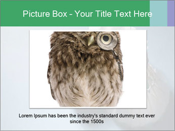 0000073457 PowerPoint Template - Slide 16