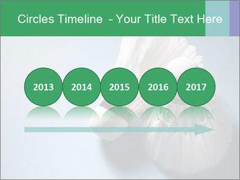 0000073457 PowerPoint Template - Slide 29