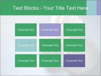 0000073457 PowerPoint Template - Slide 68