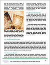 0000073457 Word Template - Page 4