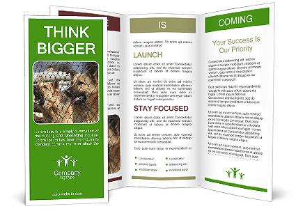 0000073468 Brochure Template