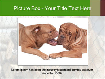 0000073468 PowerPoint Template - Slide 16