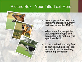 0000073468 PowerPoint Template - Slide 17
