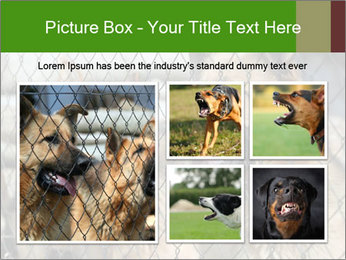 0000073468 PowerPoint Template - Slide 19