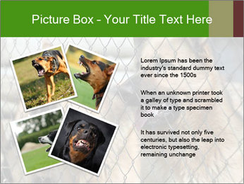 0000073468 PowerPoint Template - Slide 23