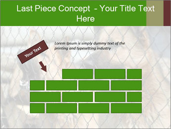 0000073468 PowerPoint Template - Slide 46