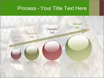 0000073468 PowerPoint Template - Slide 87