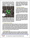 0000073469 Word Template - Page 4