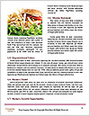 0000073471 Word Templates - Page 4