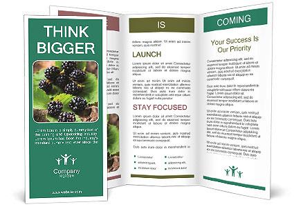 0000073472 Brochure Template