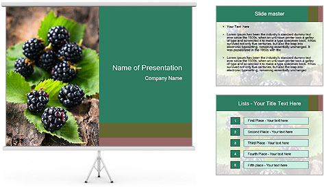 0000073472 PowerPoint Template