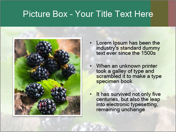 0000073472 PowerPoint Template - Slide 13