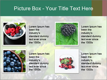 0000073472 PowerPoint Template - Slide 14
