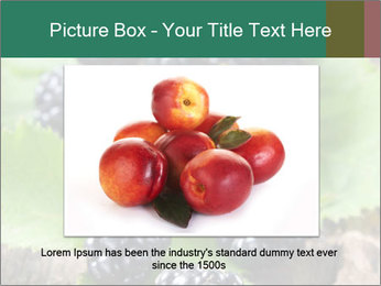 0000073472 PowerPoint Template - Slide 16