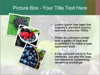 0000073472 PowerPoint Template - Slide 17