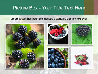 0000073472 PowerPoint Template - Slide 19