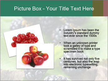0000073472 PowerPoint Template - Slide 20
