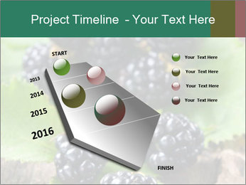 0000073472 PowerPoint Template - Slide 26