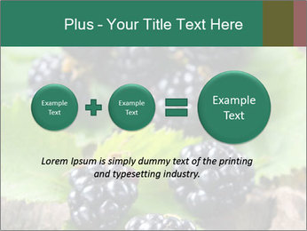 0000073472 PowerPoint Template - Slide 75