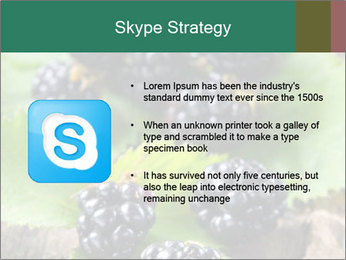 0000073472 PowerPoint Template - Slide 8