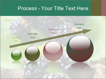 0000073472 PowerPoint Template - Slide 87