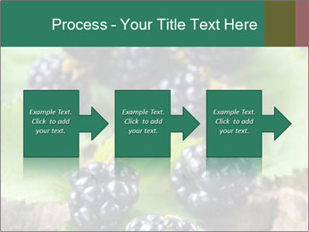 0000073472 PowerPoint Template - Slide 88