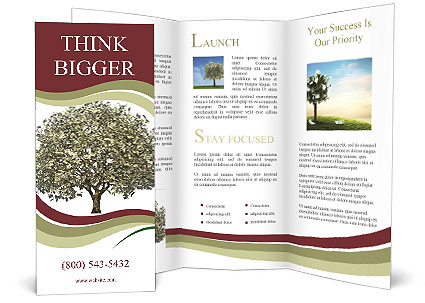 0000073476 Brochure Template
