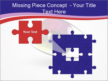 0000073488 PowerPoint Template - Slide 45