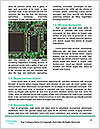 0000073490 Word Templates - Page 4