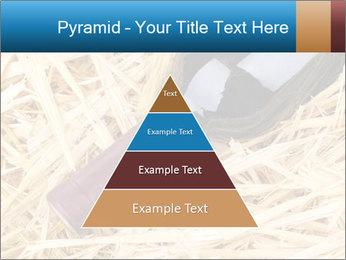 0000073494 PowerPoint Template - Slide 30