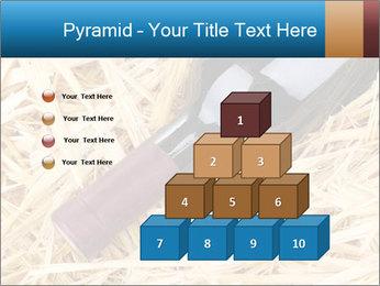 0000073494 PowerPoint Template - Slide 31