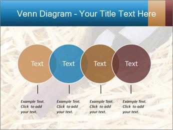 0000073494 PowerPoint Template - Slide 32