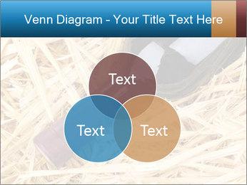 0000073494 PowerPoint Template - Slide 33