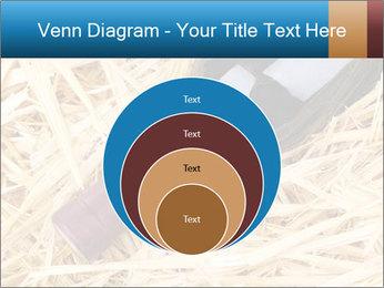 0000073494 PowerPoint Template - Slide 34