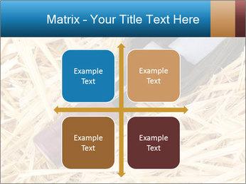 0000073494 PowerPoint Template - Slide 37