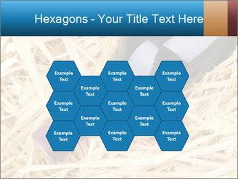0000073494 PowerPoint Template - Slide 44