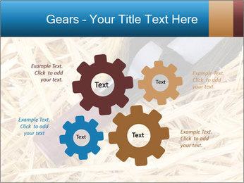 0000073494 PowerPoint Template - Slide 47